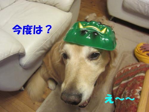 IMG_4636.jpg