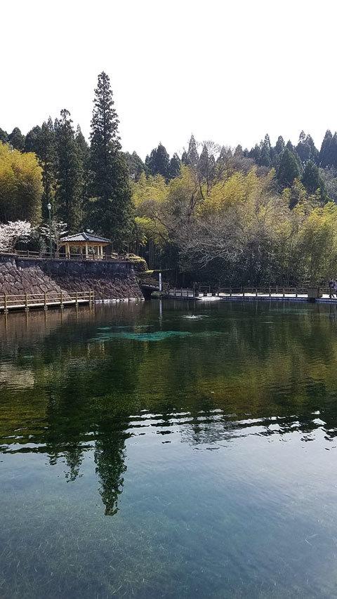 丸の池公園の画像
