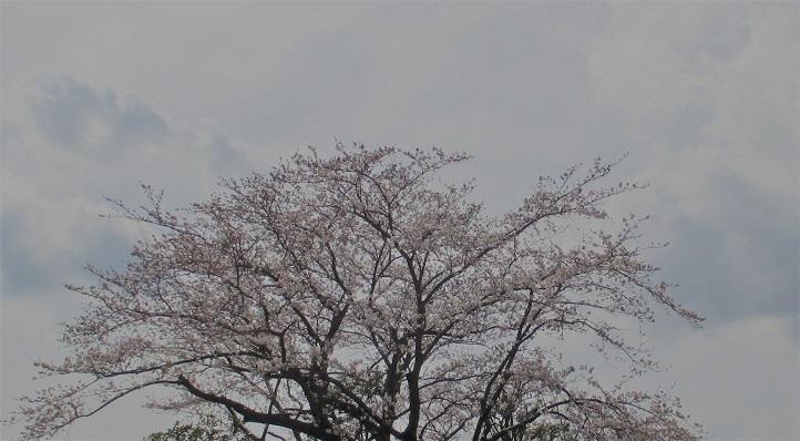 諏訪さん11