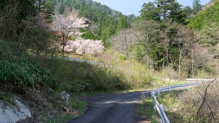 20170430田立の滝170L