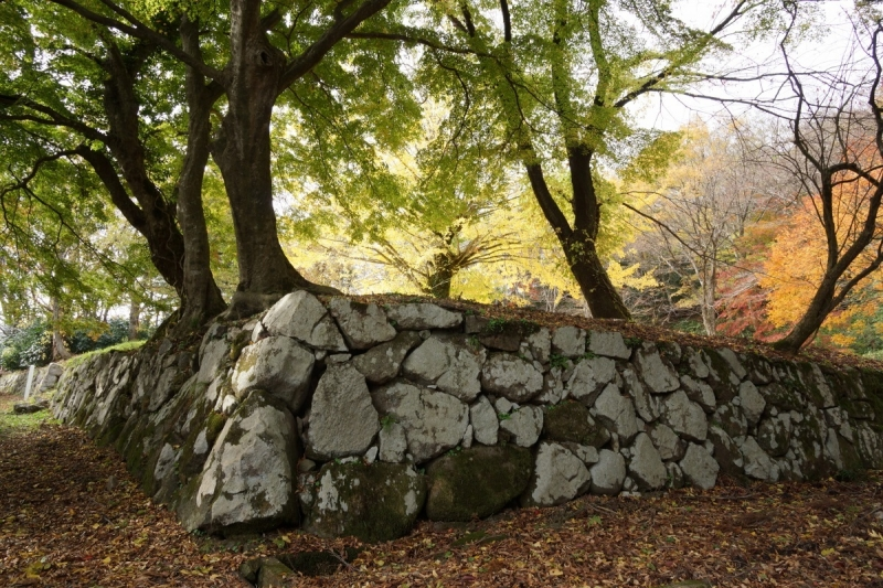5石垣 (1200x800)