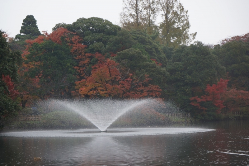 3噴水 (1200x800)