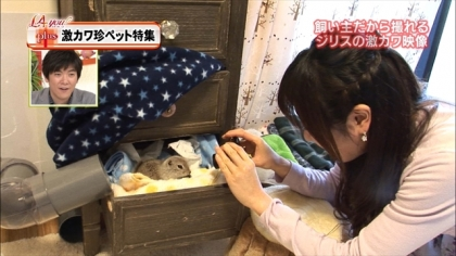 180309 紺野あさ美 (5)
