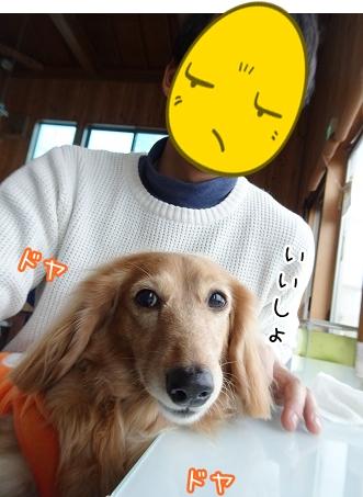 kinako9141.jpg