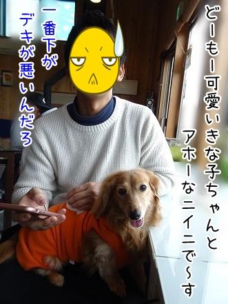 kinako9144.jpg