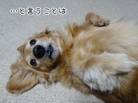kinako9258.jpg