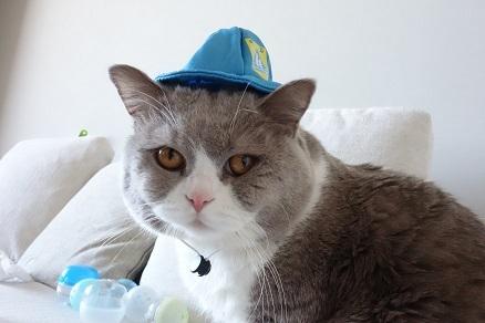 20180319帽子4