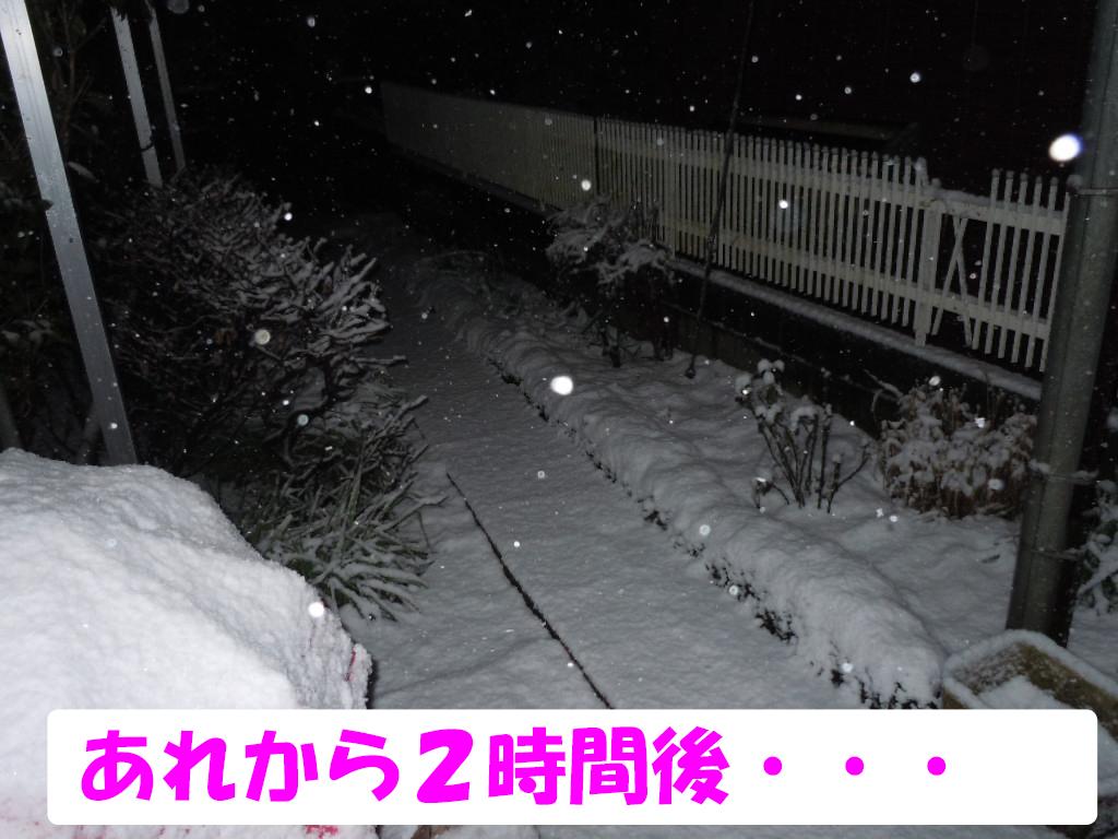 18年雪6