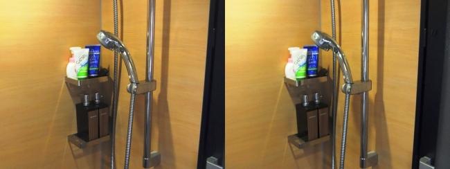 硝子の城 バスルーム⑤(平行法)