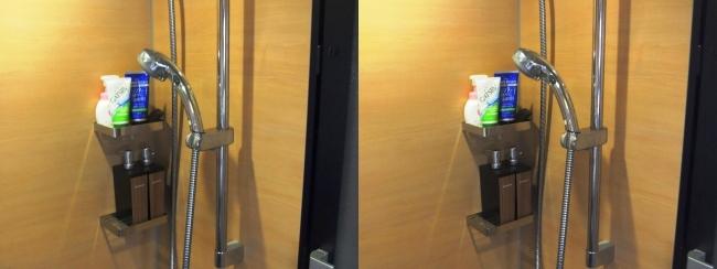 硝子の城 バスルーム⑤(交差法)