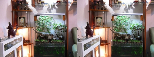硝子の城 リビングルーム アクアテラリウム・コーナー棚②(交差法)