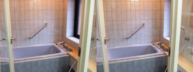 硝子の城 オープンハウス バスルーム(平行法)