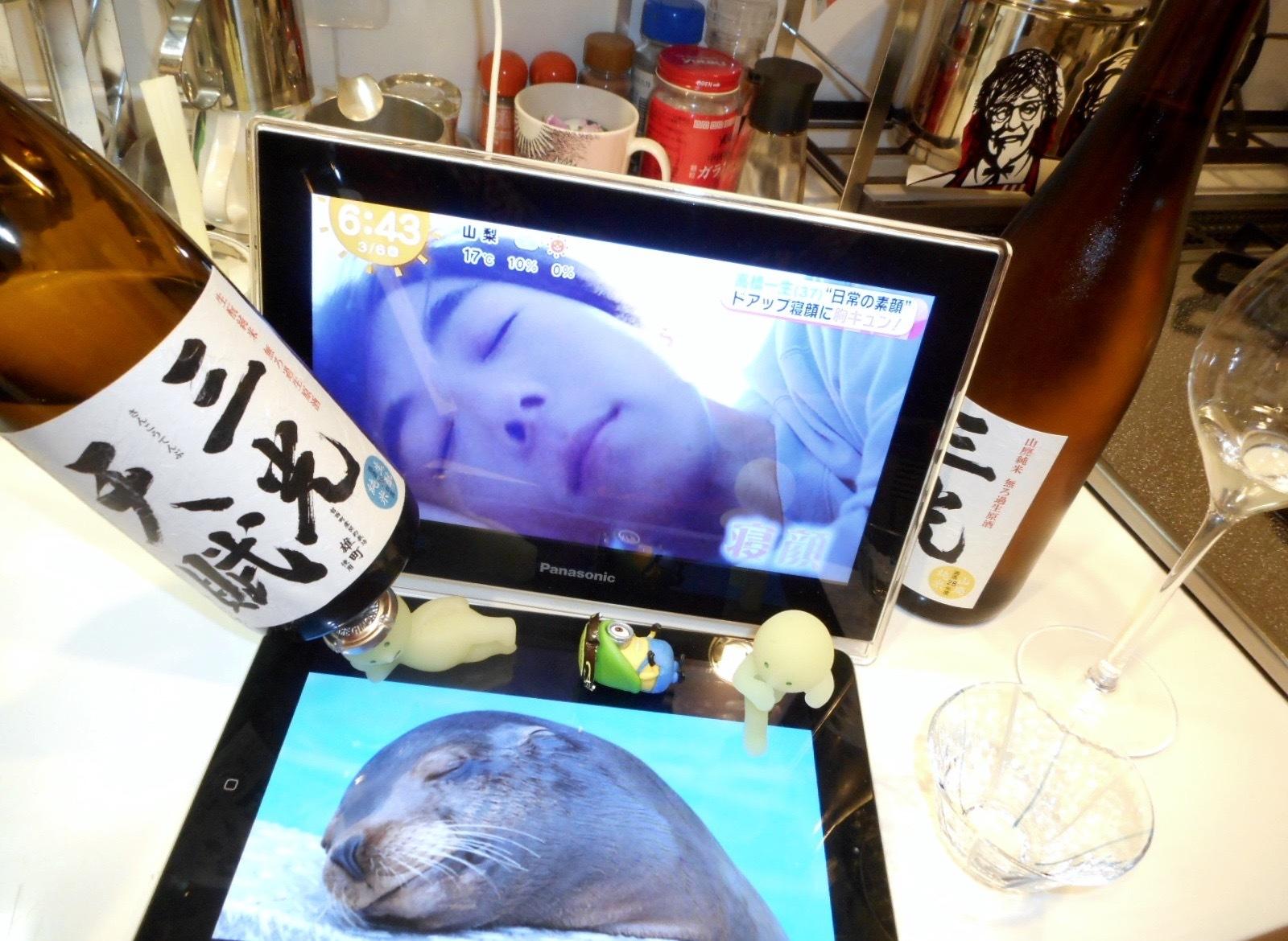 sankoutenpu_kimoto_omachi28by1.jpg