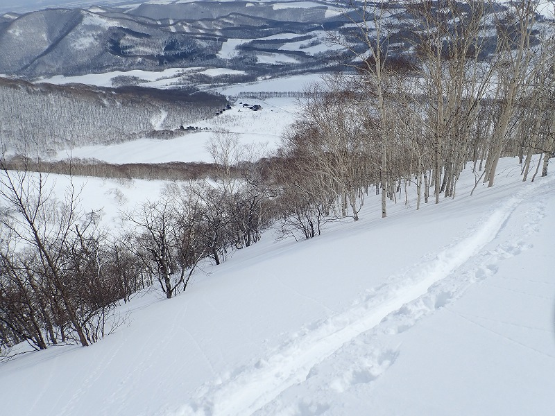 東ヌ5悪雪