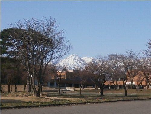500 20180331 04 文化ホール妙高はねうま桜並木