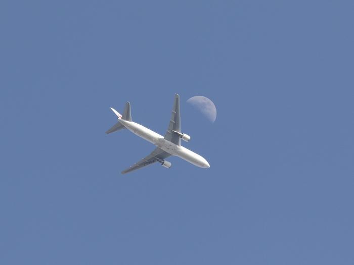 0C6A8201飛行機&お月さん