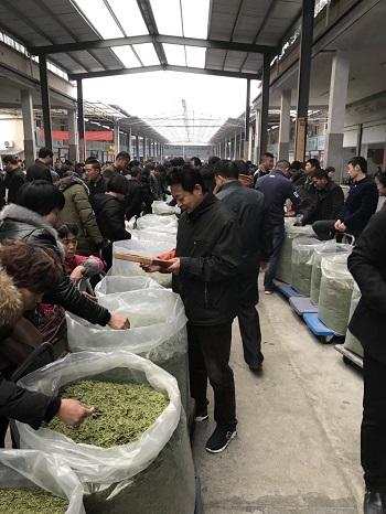 緑茶取引―1