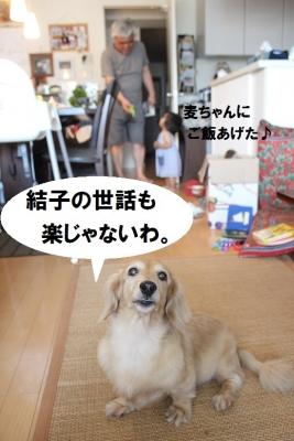 20160716IMG_5779.jpg