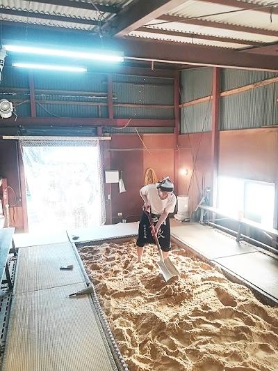 日本酒好きの祭典発酵の里神崎の『酒蔵まつり』へ【後編】