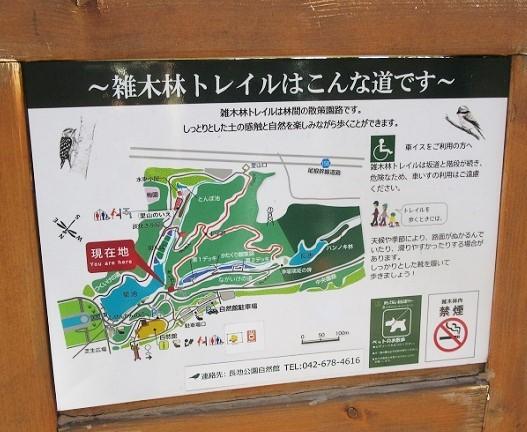 長池公園180206⑯
