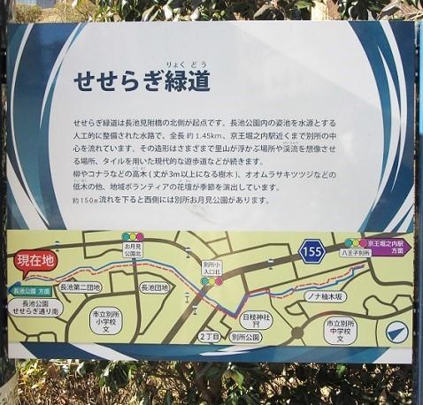 長池公園180206⑳③