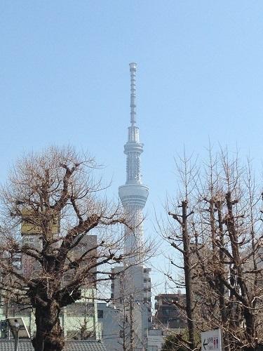 東京180322-1