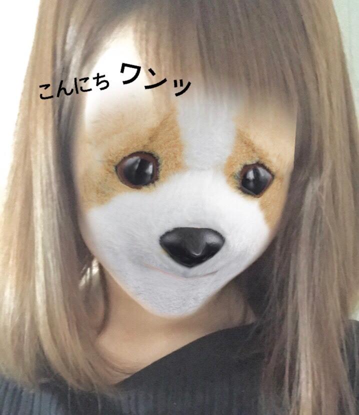 S__31195138.jpg