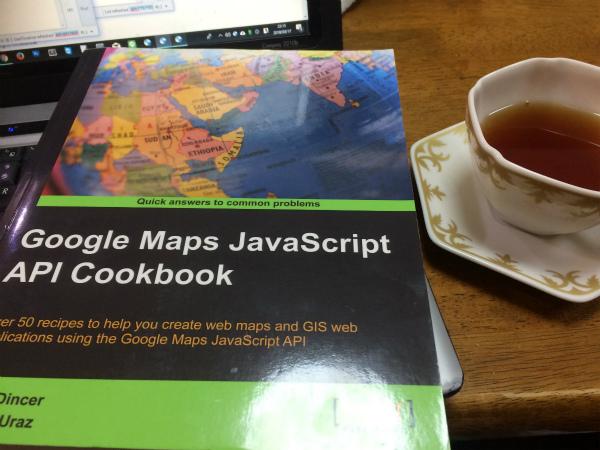 Google Map JavaScript API