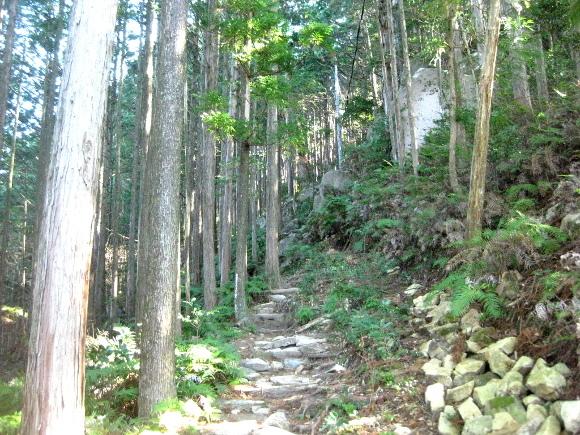 馬越峠道(天狗倉山01)14