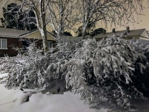 snowdublinbymarcus0318