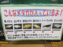 西村ジョイ成合店 ペットセンター*DBCA*デビシア