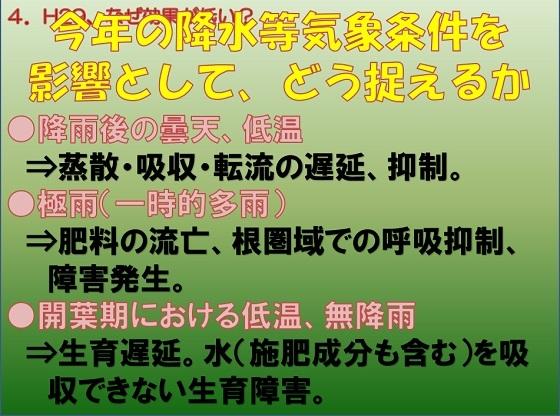 b4_20180311081211134.jpg