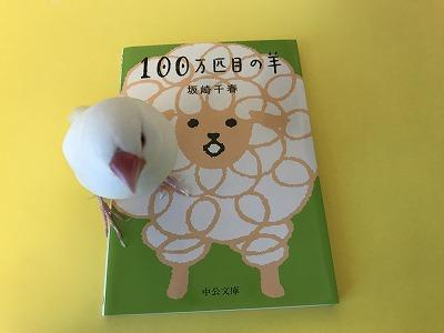 moko201803.jpg