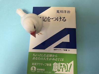 nikkiwotsukeru201803.jpg