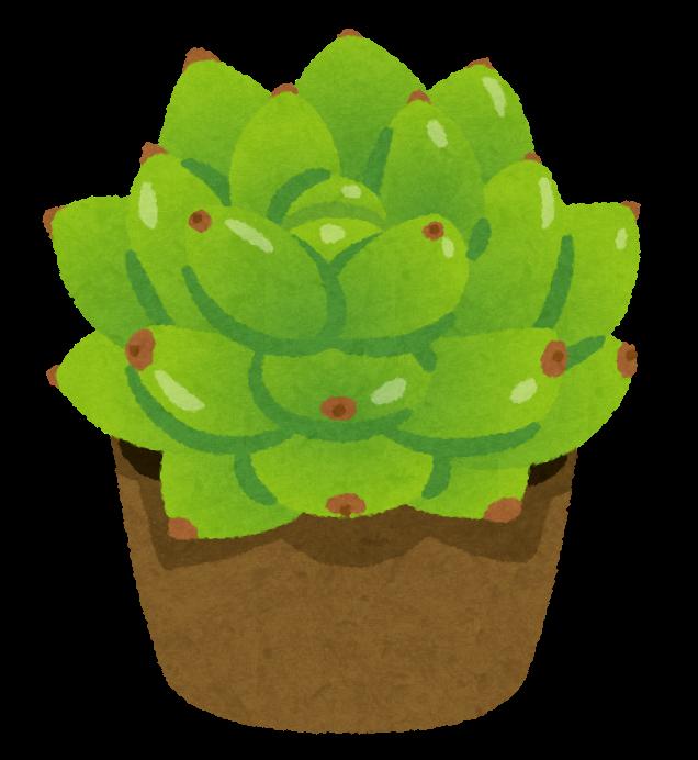 plant_taniku_harumoe.png