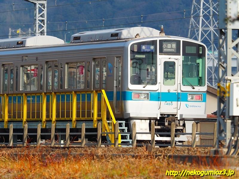 s-P1204614.jpg