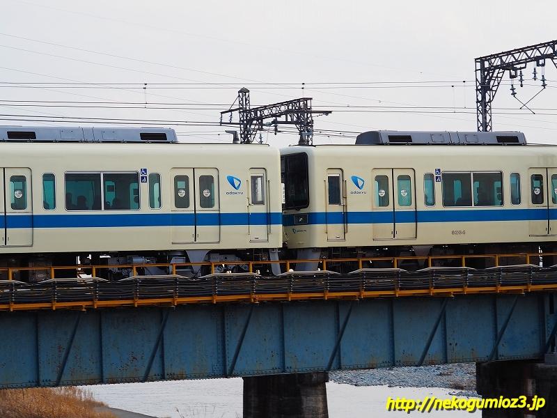 s-P1205337.jpg