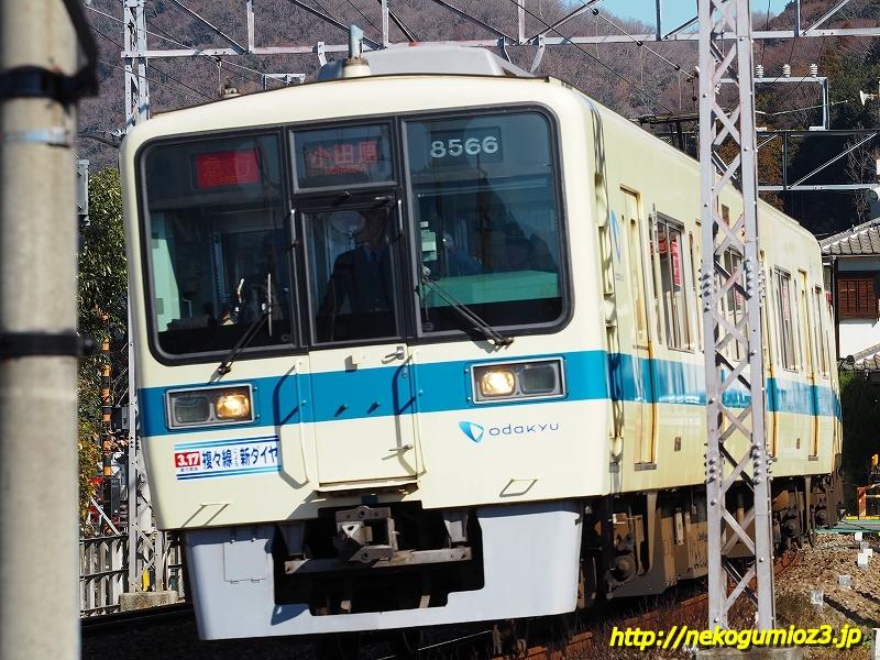 s-P1279154.jpg