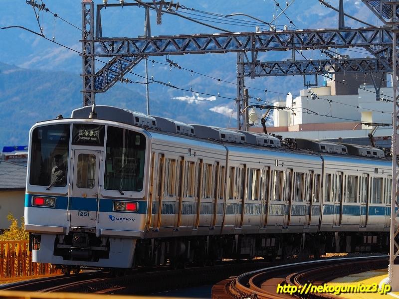 s-P1279203.jpg
