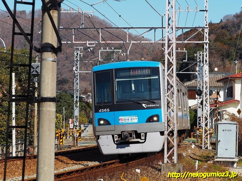 s-P1279518.jpg