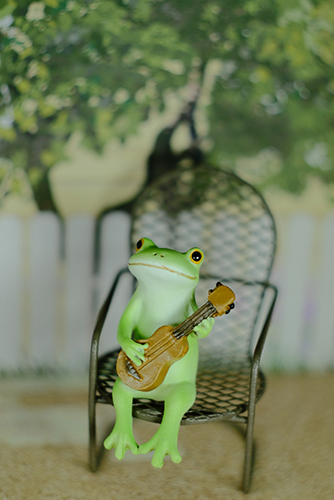ツバキアキラが撮ったカエルのコポー。木蔭でウクレレを弾くコポタロウ。