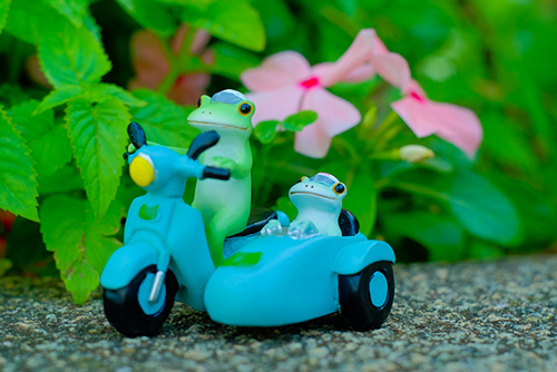 ツバキアキラが撮ったカエルのコポー。お花のそばをサイドカーで走る、コポタロウとコポミ。