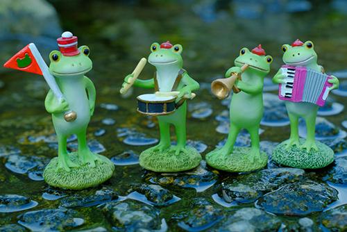 ツバキアキラが撮ったカエルのコポー。水辺で演奏していて、川の中へも入っていくコポタロウ楽団。