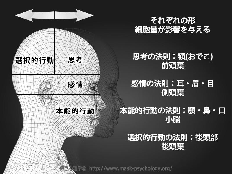 仮面心理学ベーシッククラス