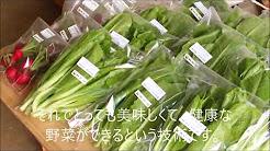 特別篇<Halu農法紹介ビデオ>