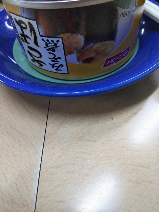 DSC_0007 (2)