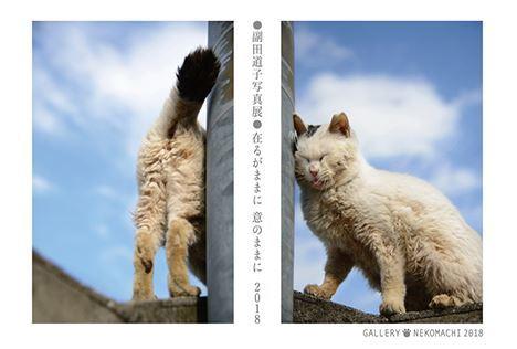 副田道子写真展 在るがままに意のままに2018