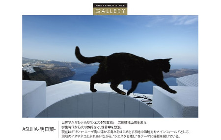 ASUHA 明日葉 作品展 MIKISSIMES GINZA GALLERY