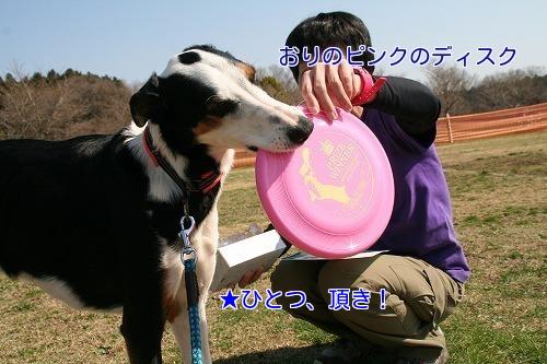 20180325_26.jpg