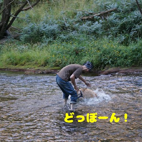 gaku (86-3)